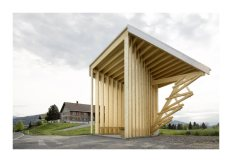 Bus stops in Austrian town