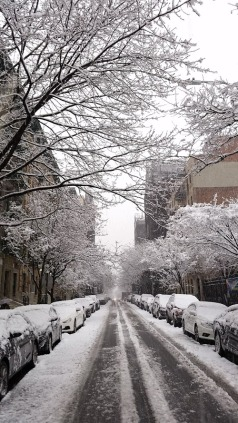 NYC, Snow in April '18